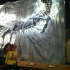 Royal Tyrrel Museum
