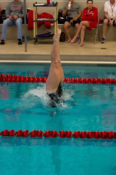 15 01 17 Brockport v Oneonta Diving-237