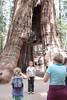 Yosemite-2010-June-4568
