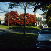 1979/ Front yard of Willowbrook Road house. This was the last year for the old Blue Spruce that slowly died of Cytospora disease. In 1980 we planted a Red Maple which is still there today. Note the beautiful early fall color of the Zeusky and Cetie's Japanese Maples across the street.