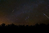 A Christmas Meteor Light Show: The 2010 Geminids