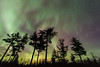 """AURORA 4074<br /> <br /> """"Another awesome aurora show!""""<br /> <br /> Northern Lights on April 15, 2015"""