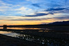 Sunset - Bosque del Apache