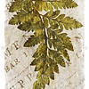 Vintage Fern Leaf Series I