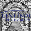 Inniswood Garden BW edited