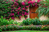 A Galleon Drive home entrance door with bougainvillea flowers in Naples, Florida, USA.