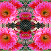 Red Torch Kaleidoscope