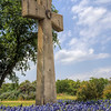 Rising from the Bluebonnets