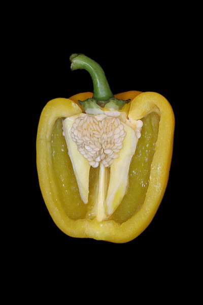 Yellow Pepper Close Up