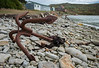 Falkland Islands - West Point Island - Rusted Anchor.