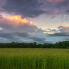 2014 5-23 Dorbrook Park Sunset Tall Grass-15_6_7