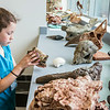 "Youngsters learn all about dinosaurs in Summer Sessions' DinoCamp at the Murrie Building.  <div class=""ss-paypal-button"">Filename: AAR-14-4242-73.jpg</div><div class=""ss-paypal-button-end""></div>"