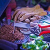 Various gardening tools and books are used as props for a photo about growing herbs in Interior Alaska gardens.  Filename: AAR-12-3256-59.jpg