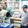 "Veterinary Medicine student, Christopher, Clement, interns with Dr. David Hunt during Summer of 2014 at the Sitka Animal Hospital in Sitka, Alaska.  <div class=""ss-paypal-button"">Filename: AAR-14-4206-10.jpg</div><div class=""ss-paypal-button-end""></div>"