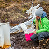 "Kelsey Blake, a graduate student from the University of Victoria in British Columbia, collects water samples from a research site near the headwaters of the Kuparuk River on Alaska's North Slope.  <div class=""ss-paypal-button"">Filename: AAR-14-4217-050.jpg</div><div class=""ss-paypal-button-end""></div>"