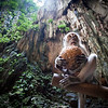 Monkey Business<br /> A Macaque monkey sits eating a coconut in the Batu Caves in Kuala Lumpur, Malaysia.
