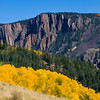 Colorado Fall Foliage 026 | Wall Art Resource