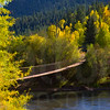 Colorado Fall Foliage 031 | Wall Art Resource