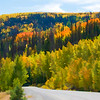 Colorado Autumn Scenery 0 | Wall Art Resource