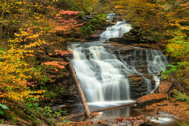 """<center><br><font size=""""4"""" color=""""white""""><b>""""Mohican Falls"""" - Ricketts Glen State Park</b><br> </font> <br><font size=""""3"""" color=""""white""""> <u>Recommended Print sizes*</u>:<br>  4x6  