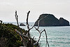 View of Three Arch Rocks located in the Oregon Coast  © Copyright Hannah Pastrana Prieto