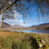 AUTUMN AT LOCH AWE
