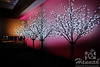Decorative Tree Lights  © Copyright Hannah Pastrana Prieto