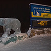 Extreme winter temperatures are part of the UAF experience.  Filename: LIF-12-3269-11.jpg