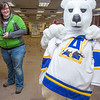 The UAF mascot shops for some new clothes in the UAF Bookstore in Constitution Hall.  Filename: LIF-14-4101-25.jpg