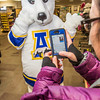 The UAF mascot tries on a new jersey in the UAF Bookstore in Constitution Hall.  Filename: LIF-14-4101-47.jpg