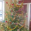 wp_p9_bklin_tree_121213