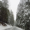 Yosemite National Park, California (Feb  9) (16)