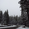 Yosemite National Park, California (Feb  9) (17)