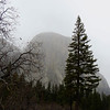 Yosemite National Park, California (Feb  9) (7)