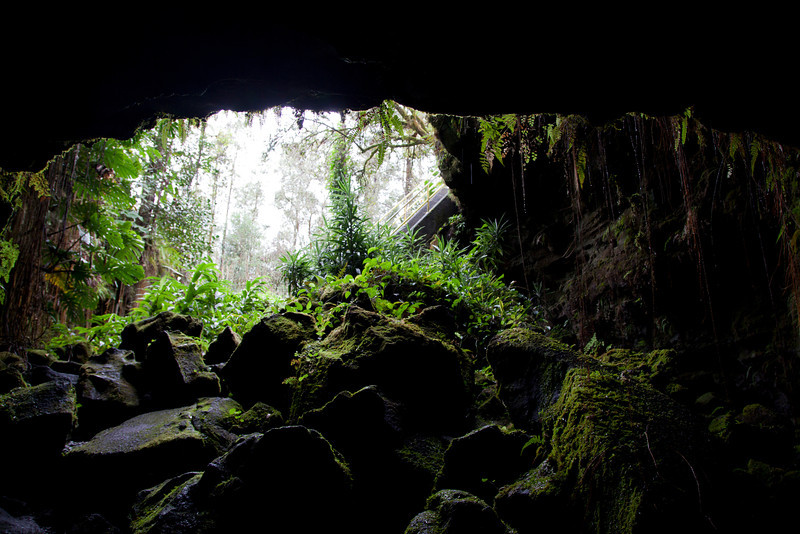 Lava Tube Near Hilo IMG_0564