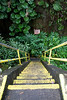 Lava Tube Steps Near Hilo IMG_0560
