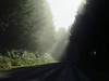 Traveling to Kalalock Cpgrd, Olympic Peninsula NP, WA (2)