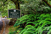 Signage at Horsetail Falls Columbia River Gorge Scenic Area, Oregon, U.S.A.  © Copyright Hannah Pastrana Prieto