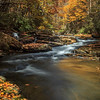 Wandering up Mill Creek - Ansted, WV