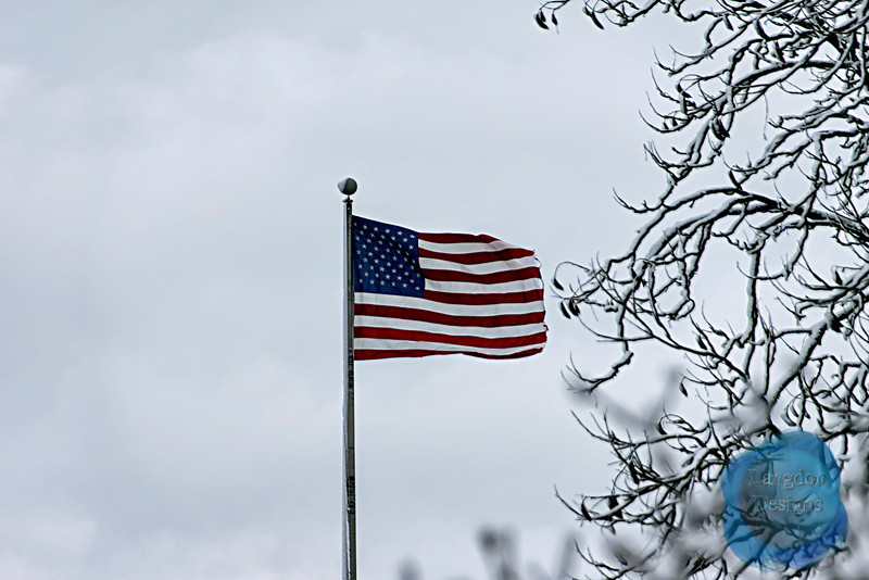 Winter Flag