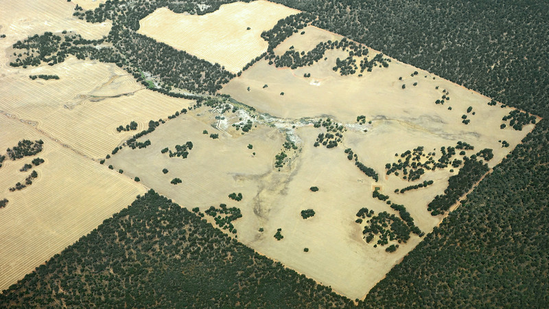 Agriculture adjacent to the Bewmalling nature reserve area, West Australia