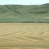 Fields with Furrows
