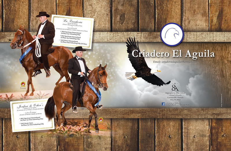 ADDESIGN-Criadero El Aguila-PFHW-Sept-Oct-Nov-2013-hr-1