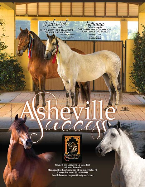 PFHW-July-Aug-2015-LaCatedral-AshevilleWins