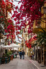 Bougainvillea flowers decorate the streets and alley ways of Nafplio, Greece.
