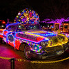 Houston Zoo Lights Art Car