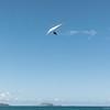 Summer Flying-310