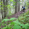 Female mountain biker, Mt Robson.