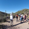 Pine Creek and Ballantine Trail Tonto National Forest 3H Meetup Group hike