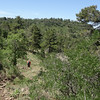 Woodchute wilderness trail jerome cottonwood clarkdale mingus mountain handglider